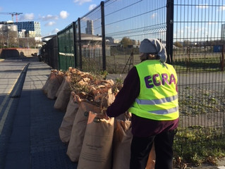 Thames Path Clean Up - 30 bags & counting!