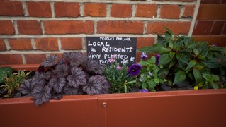 Volunteers needed for gardening and 'greening' projects in East Greenwich