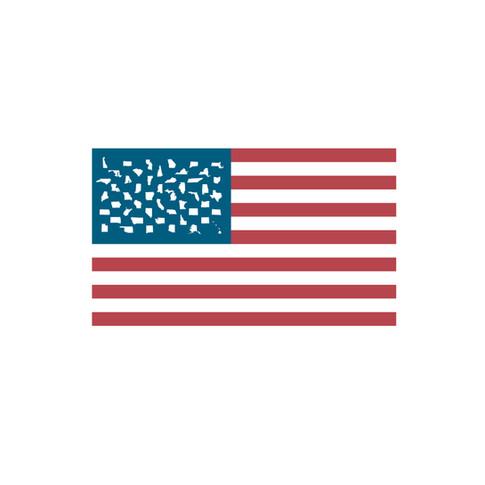 USA Custom Flag Graphic Icon
