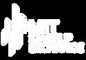 white_MIT_STEX_logo.png