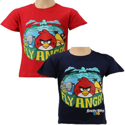 Barn T-Shirt-Angry Birds