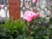 PORTADA2.jpg