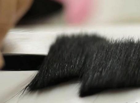 Pestañas de pelo Humano o Pelo Natural de Visón o Mink Real???
