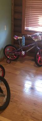 Dirty Spokes- Kids Bikes.JPG