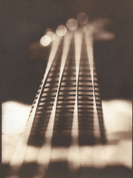 Bass Photo