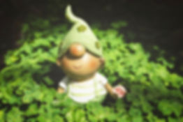 clover and gnome.jpg