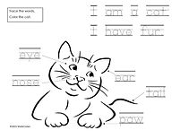 Cat Trace and Learn.jpg