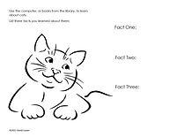 Cat Research.jpg
