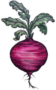 The Grateful Chef Beet Logo