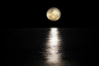Full Moon Feels