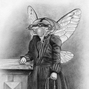 Sister Cicada