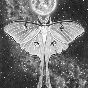Luna's Ascension