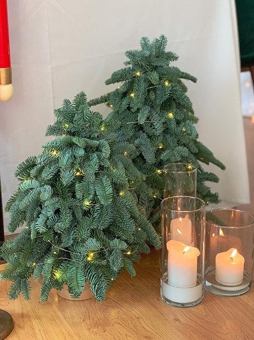 Arvore de Natal mini 50cm