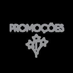 PROMOÇOES-01-01.png