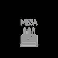 MESA-01.png
