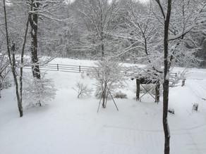 冬? 春?