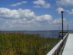 Lake Reedy