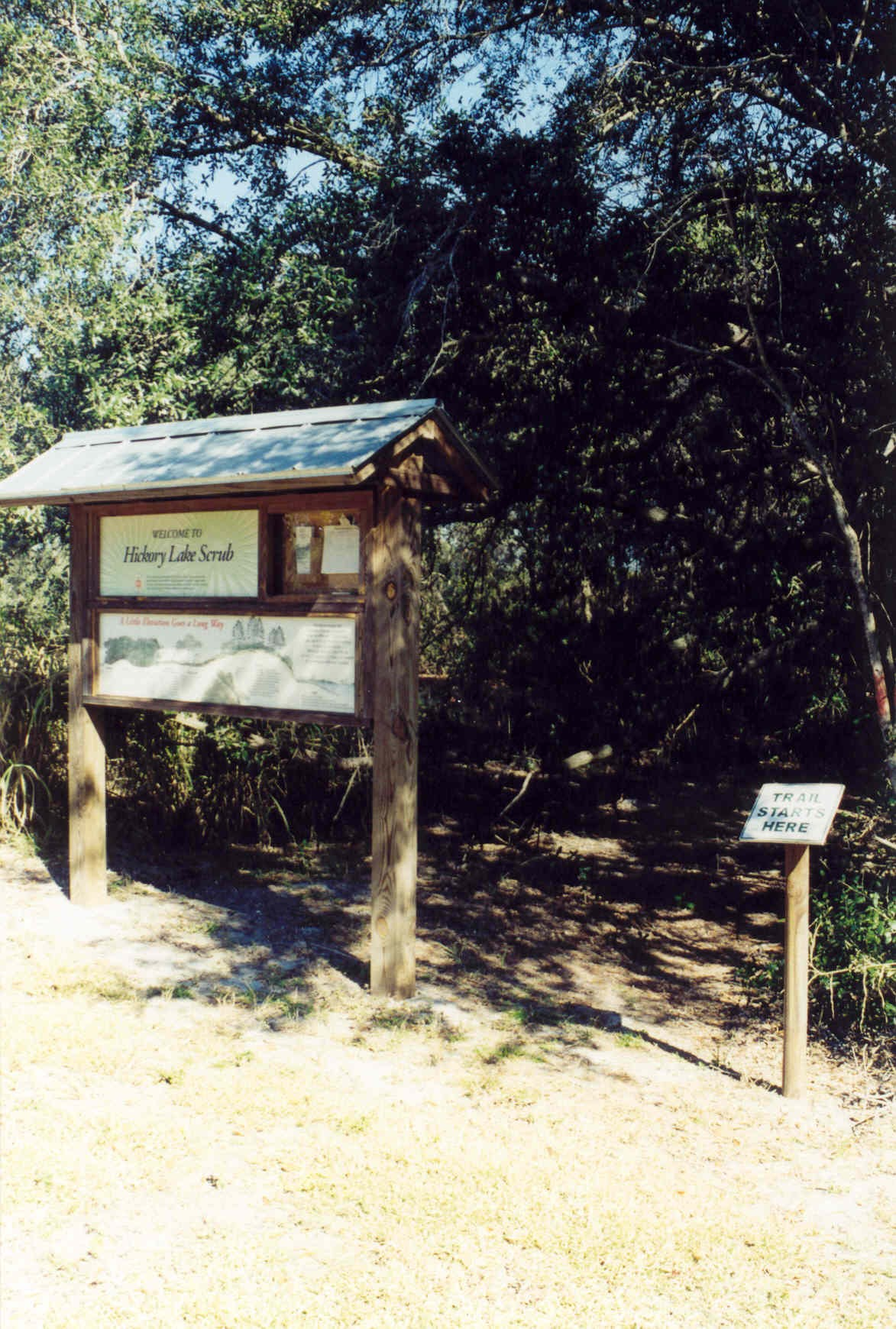 Hickory Lake Scrub Trailhead