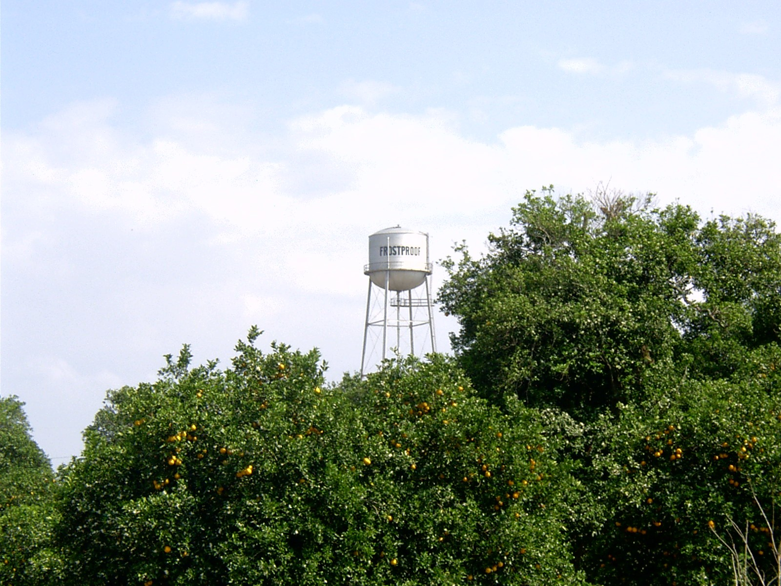 Frostproof Water Tower