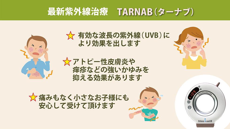 ターナブ-2.jpg