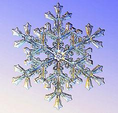 Snow  Crystal.jpg