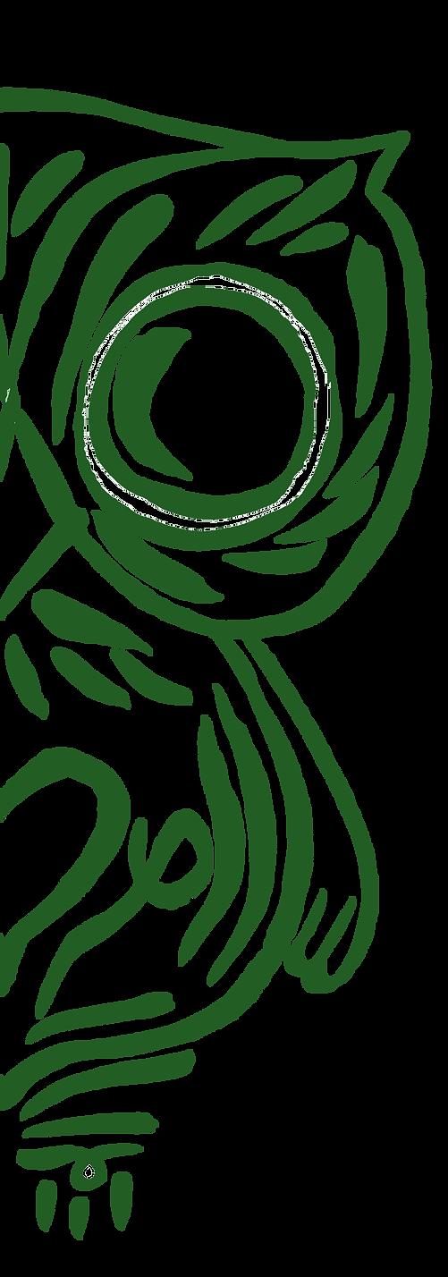 owl Green Half.png