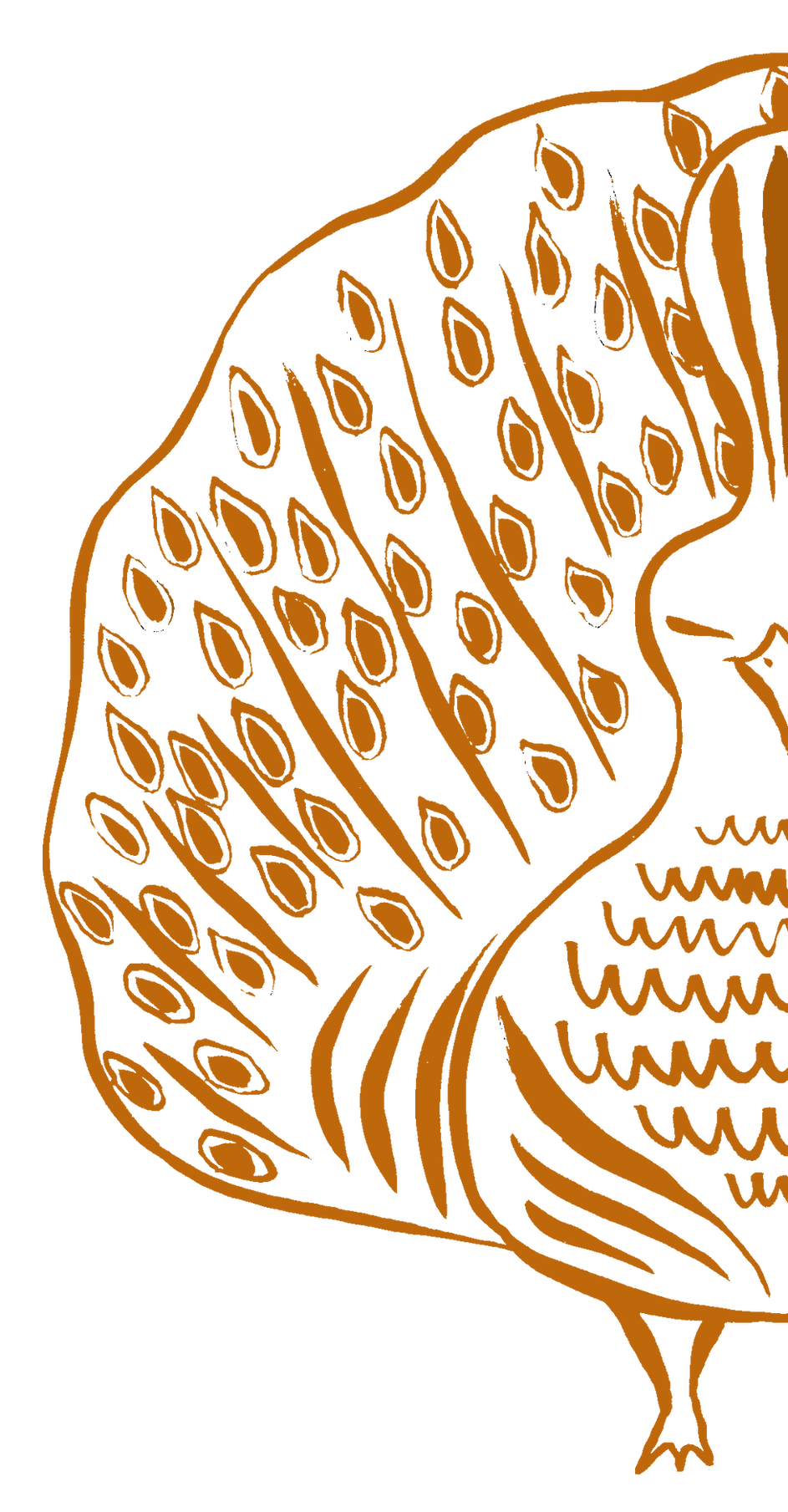 peacock orange half.png