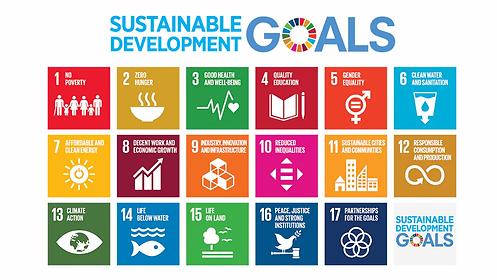 UN Global Goals.webp