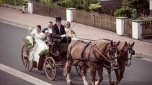 Hochzeitsfotograf gesucht!