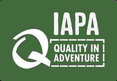 Logo_IAPA2018_RGB-2.png