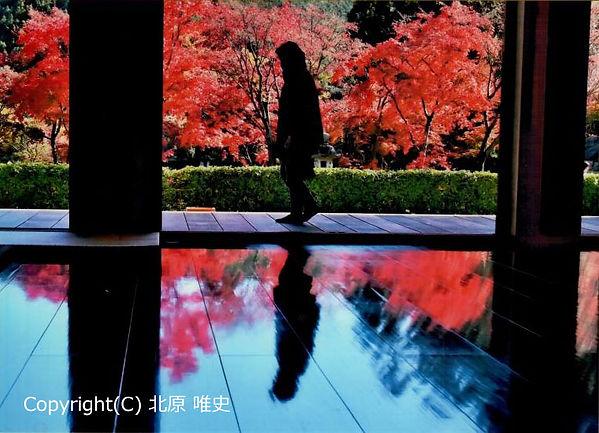 H3007_kitahara.jpg