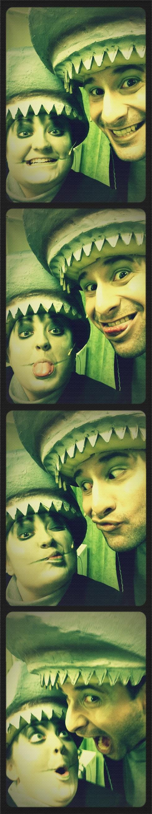 Crazy Sharks