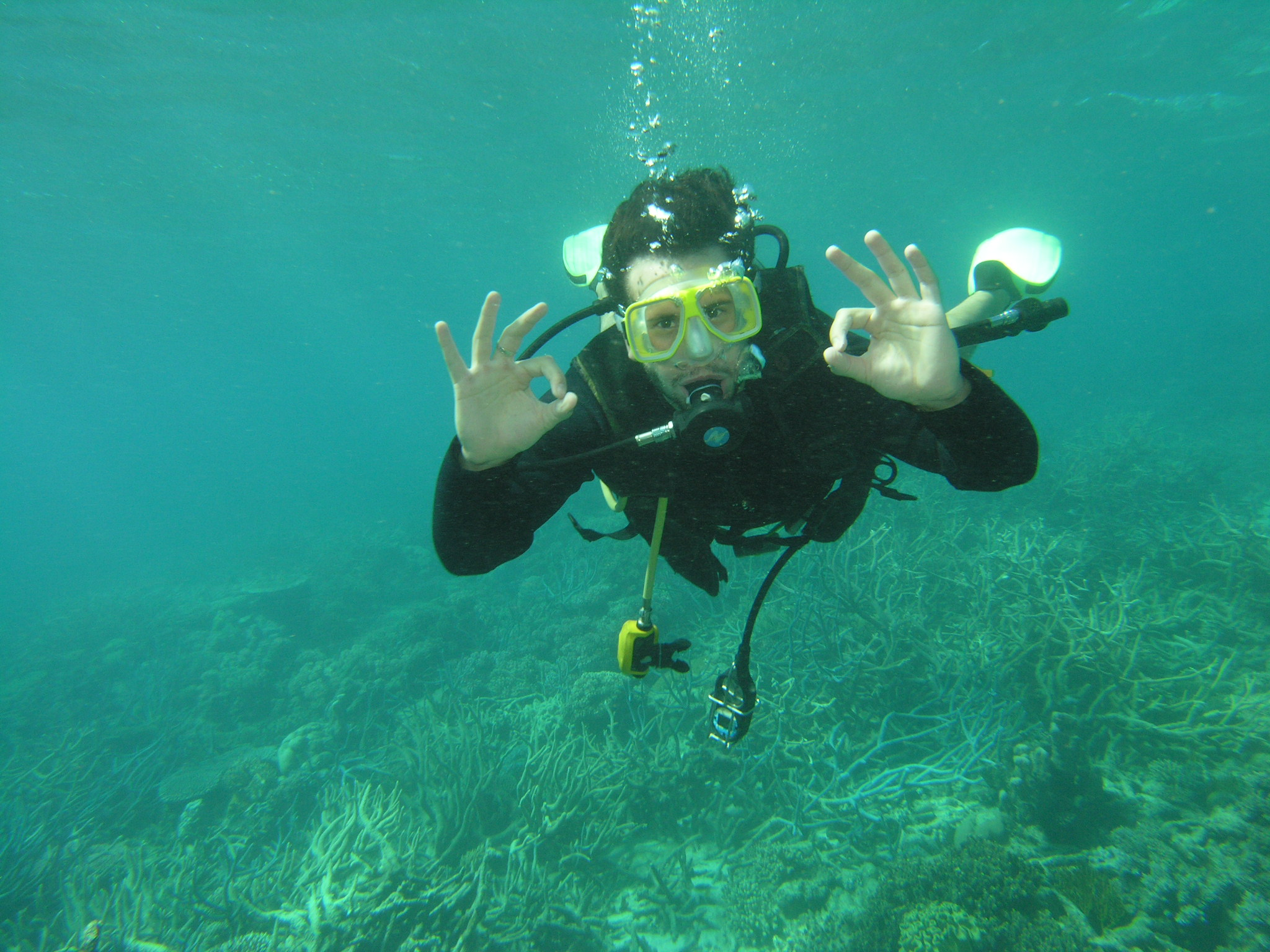 Tauchen im Great Barrier Reef