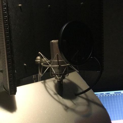 Steffens Mikrofon