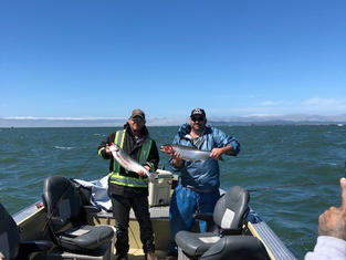 salmon24.jpg