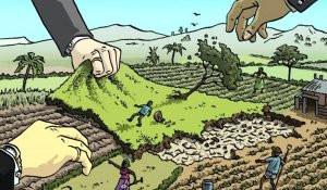 Creciente concentración de la tierra en la región más desigual del mundo