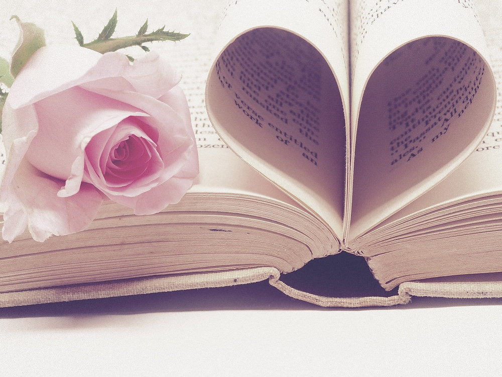 Open book with the center pages forming a heart. A pink rose sits on top on the left side.