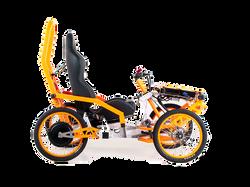 EV4 Moutain Cart