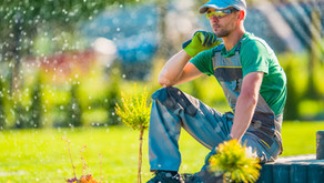 Can non-conforming products be landscaping products?
