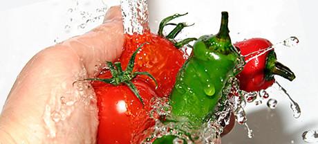 Advanta Safety Basic Food Safety & Hgyiene