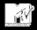 pngfind.com-mtv-logo-png-2333077.png