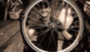 bike_repair_edited.jpg