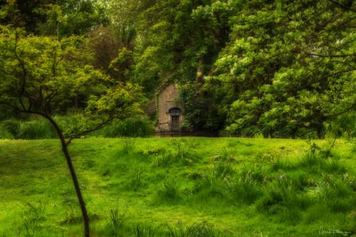 The Waterhouse Woodland Gardens