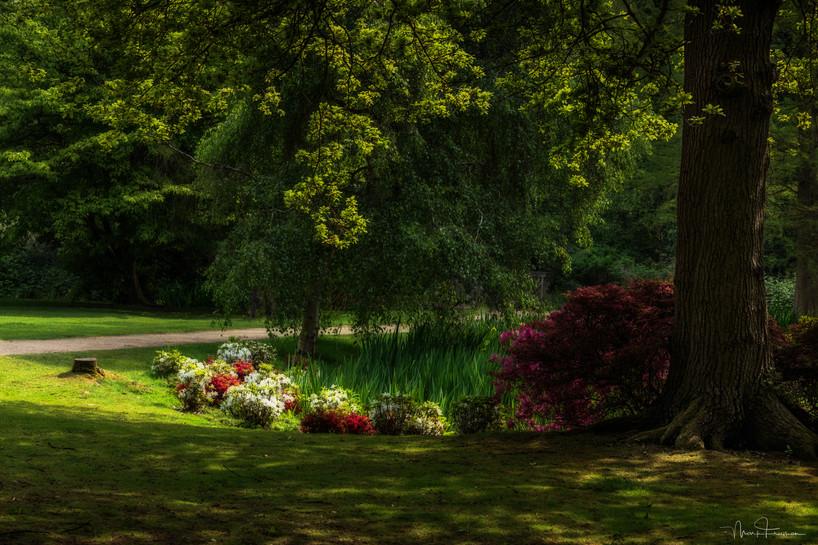 Woodland Gardens