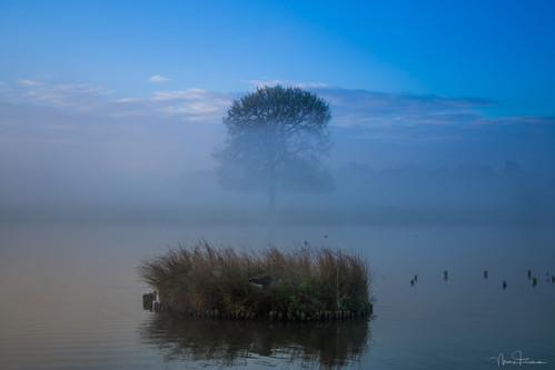 April Mist
