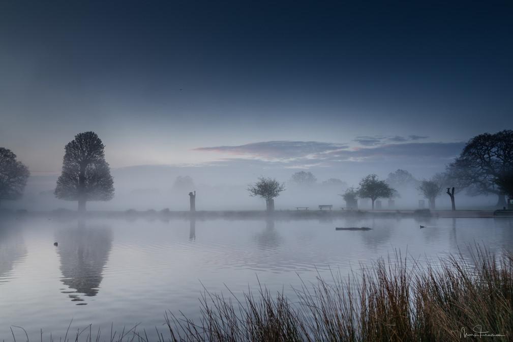 Misty April Morning