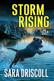 Book Review: Storm Rising by Sara Driscoll