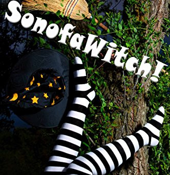 Book Review: Sonofawitch! anthology by collected authors