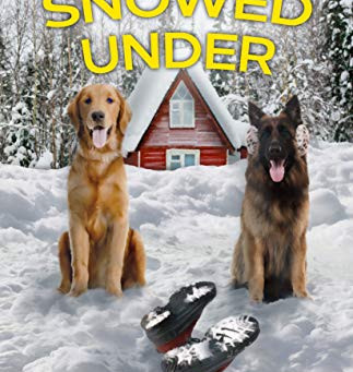 Book Review: Snowed Under by Mary Feliz