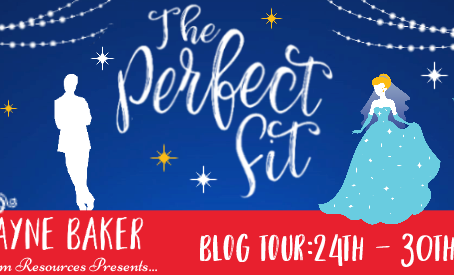 Blog Tour and Book Review: The Perfect Fit by Mary Jayne Baker